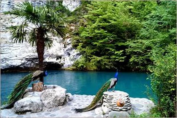 Абхазия все красоты