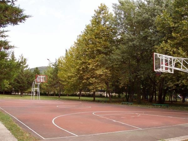 """База отдыха """"Горизонт"""" Ольгинка Туапсе"""